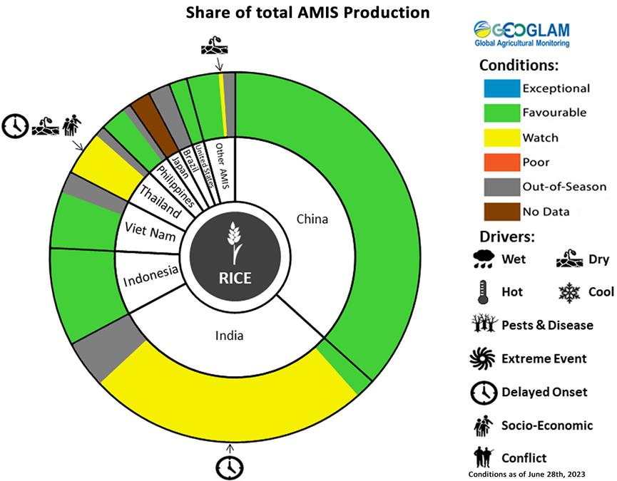Agricultural Market Information System Rice