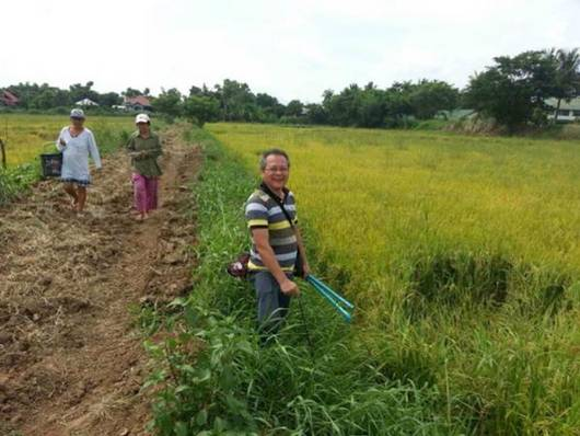 Field test of crop cutting survey in the Philippines